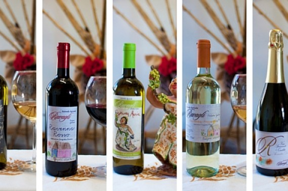 Scopri tutti i miei vini