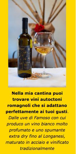 acquistare online vini autoctoni romagnoli