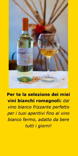 acquistare online vini bianchi romagnoli