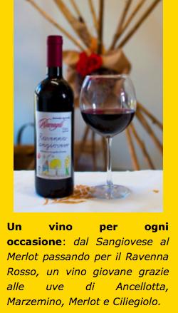 acquistare online vini rossi romagnoli