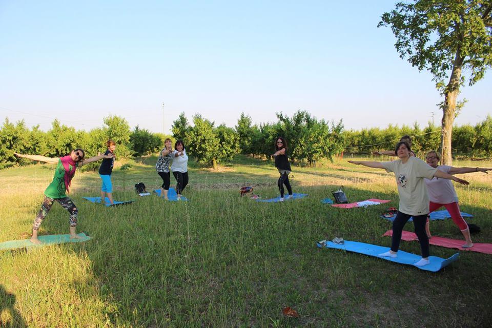 come_rilassare_la_mente_e_il_corpo_meditazione_vigna_azienda_ravagli